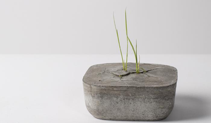 POWER(Flower Bowl)